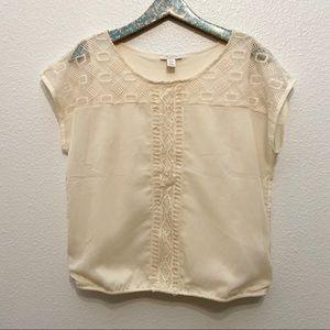 Saint Tropez West | cream sheer lace blouse